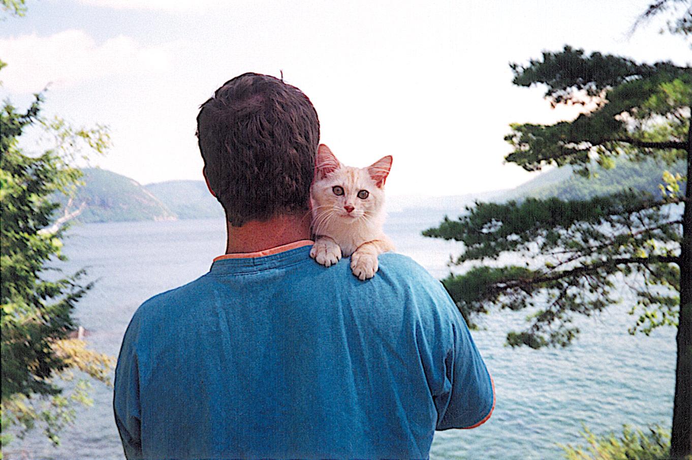 patrick mcfeeley photographer for american windsurfer magazine