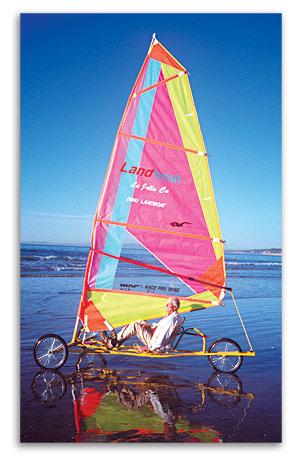 american_windsurfer_4.5_letter_sandsurfing-guy